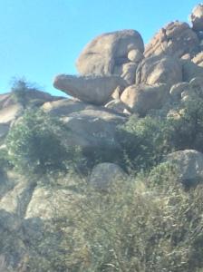 Roadside Rocks